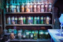 O interior da mágica do professor Snape entalha a coleção Decoração Warner Brothers Studio para Harry Potter Reino Unido Imagem de Stock
