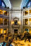O interior do museu de Smithsonian da história natural, em Wa Imagem de Stock