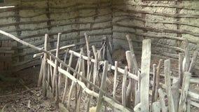 O interior dos estábulos abandonados e o prato do alimento para os carneiros filme