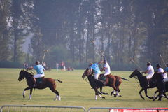 O International 2016 do Pequim Polo Open Tournament Fotografia de Stock