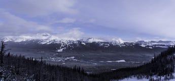 O inverno ajardina o parque nacional de Banff Imagens de Stock