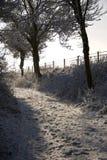 O inverno anda para baixo em uma pista coberta neve. Fotos de Stock Royalty Free