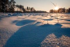 O inverno coloca o por do sol com neve Fotos de Stock