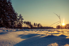 O inverno coloca o por do sol com neve Fotos de Stock Royalty Free