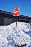 O inverno da neve do blizzard de Jonas do snowzilla ataca o 23 de janeiro de 2016 Foto de Stock Royalty Free