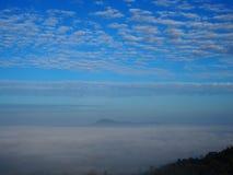 O inverno deixa o sol da luz de céu da névoa Imagens de Stock