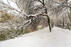 O inverno está vindo fotos de stock