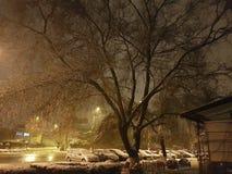 O inverno está vindo fotos de stock royalty free