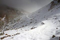O inverno está vindo Imagem de Stock