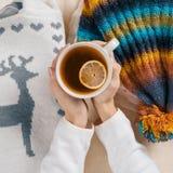 O inverno está vindo, as mãos das mulheres está guardando o copo do chá quente com limão, fundo é a roupa sazonal morna, opinião  imagem de stock