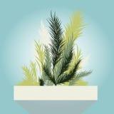 O inverno verde deixa o quadro Fotos de Stock Royalty Free