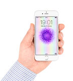 O iPhone branco 6 de Apple que indica homescreen Fotos de Stock
