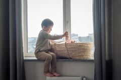 O irmão mais novo está sentando-se perto da janela com a irmã do himnewborn no berço Crianças com diferença pequena da idade fotos de stock royalty free