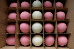 O jajkach Zdjęcie Royalty Free