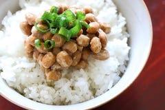O japonês tradicional fermentou feijões de soja no arroz recentemente cozinhado Fotografia de Stock
