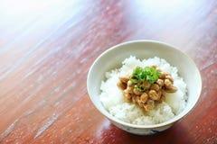 O japonês tradicional fermentou feijões de soja no arroz recentemente cozinhado fotografia de stock royalty free