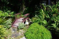 O jardim é bonito Imagem de Stock Royalty Free