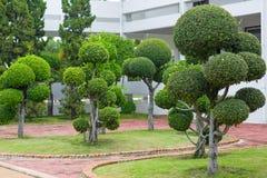 O jardim Fotos de Stock