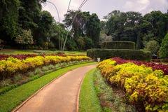 O jardim botânico real Fotografia de Stock Royalty Free