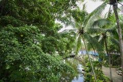 O jardim botânico tropical de NongNooch Imagens de Stock Royalty Free