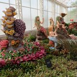 O jardim da bromeliácea no la do jogo ploen em Buriram Tailândia Imagens de Stock Royalty Free