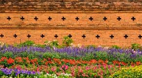 O jardim de Corolful com flores aproxima a parede de tijolo vermelho velha Fotos de Stock Royalty Free