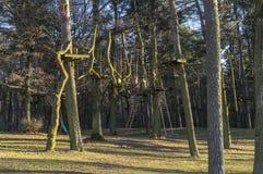 O jardim de escalada, cordas altas percorre na floresta com v?rios elementos e cordas de escalada da seguran?a entre as ?rvores i imagem de stock