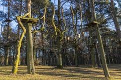 O jardim de escalada, cordas altas percorre na floresta com v?rios elementos e cordas de escalada da seguran?a entre as ?rvores i imagens de stock royalty free