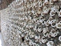 O jardim de rocha de Chandigarh, Índia Fotos de Stock Royalty Free