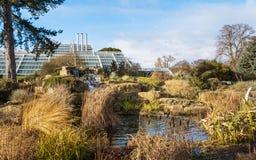 O jardim de rocha em jardins de Kew no inverno/outono foto de stock royalty free