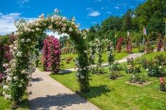 O jardim de rosas Beutig em Baden-Baden Fotos de Stock