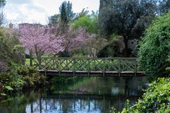 O jardim famoso de Ninfa na primavera Imagem de Stock