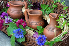 O jardim floresce centáureas foto de stock royalty free