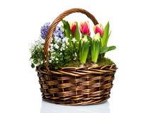 Flores do jardim na cesta fotos de stock
