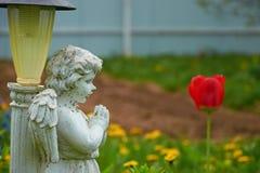 O jardim ilumina-se na estátua do formulário de um anjo e de uma tulipa vermelha foto de stock