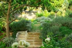 O jardim inglês da casa de campo no quintal do gramado da grama verde, paisagem infomal decora com rosas, erva dos alecrins, alf foto de stock royalty free