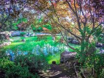 O jardim japonês bonito no parque de Manito em Spokane, lavando fotografia de stock