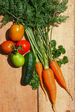 O jardim orgânico fresco cultivou vegetais em uma placa de madeira Imagem de Stock Royalty Free