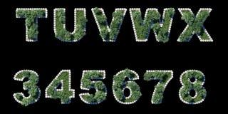 O jardim verde ajustou-se com beira de avaliação em unidades cúbicas cinzenta no preto ilustração do vetor