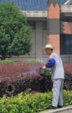 O jardineiro com o ajustador de conversão da gasolina está fazendo seu trabalho Imagem de Stock