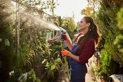O jardineiro da menina pulveriza estações de tratamento de água no berçário-jardim bonito em um dia ensolarado Trabalho no jardim imagem de stock