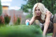 O jardineiro da mulher Imagens de Stock