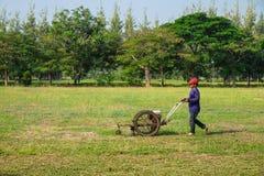 O jardineiro está segando o gramado fotografia de stock