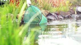 O jardineiro limpa a lagoa com uma rede, nadando a lagoa vídeos de arquivo