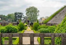 O jardineiro planta flores na mola Fotos de Stock Royalty Free