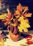 O jarro bonito da argila com folhas e trigo de outono próximo dispersou l Imagem de Stock Royalty Free