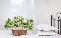 O jasmim floresce em uma cesta em uma cama fotos de stock
