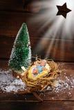 O Jesus Cristo é nascido Foto de Stock Royalty Free
