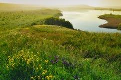 O jeziorze Fotografia Royalty Free