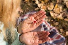 O joaninha senta-se na menina na mão Fotos de Stock Royalty Free